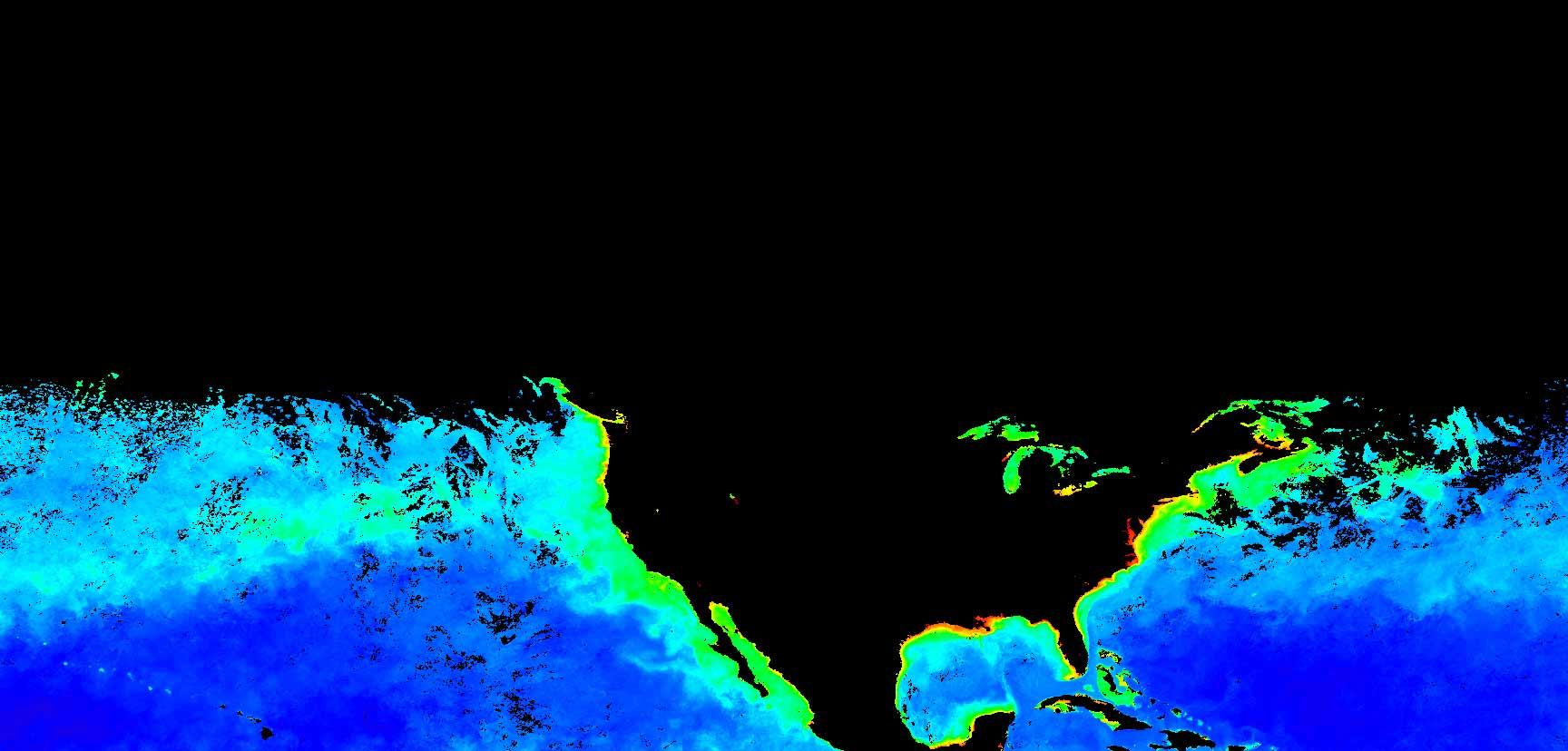 Phytoplankton Imagery