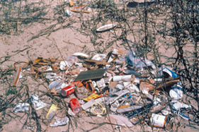 photo of marine debris